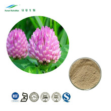 Herbal Extract Isoflavone 20% Red Clover Leaf Extract