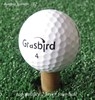 GRASBIRD 2 piece golf ball