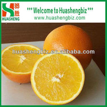 navel orange fruit price