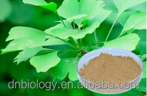 Ginkgo biloba extract/Health food supplement--- herbal extract Ginkgo Biloba softgel hot sell