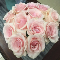 Wholesale A grade big bud size 5-10 cm fresh rose flower from China