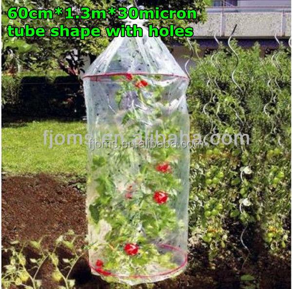 rohr film mit l chern f r schutz tomaten pflanzen. Black Bedroom Furniture Sets. Home Design Ideas