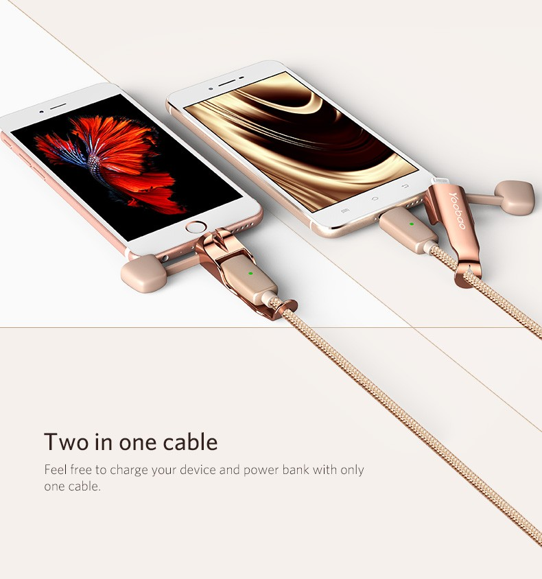 Micro and lighting Two in One Cable with Indicator