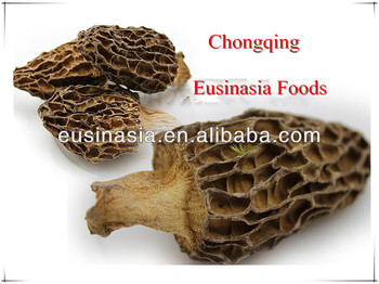 dried morchella esculenta without stem
