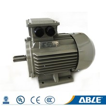 Able Customized Size Frame Cast Iron Electric Motor 3v