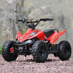 QWMOTO CE KIDS MINI-QUAD-BIKE 500W MINI-ELEKTRO-ATV FÜR KINDER