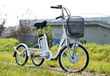 Buy electric tricycle standing with big cargo for handicapped