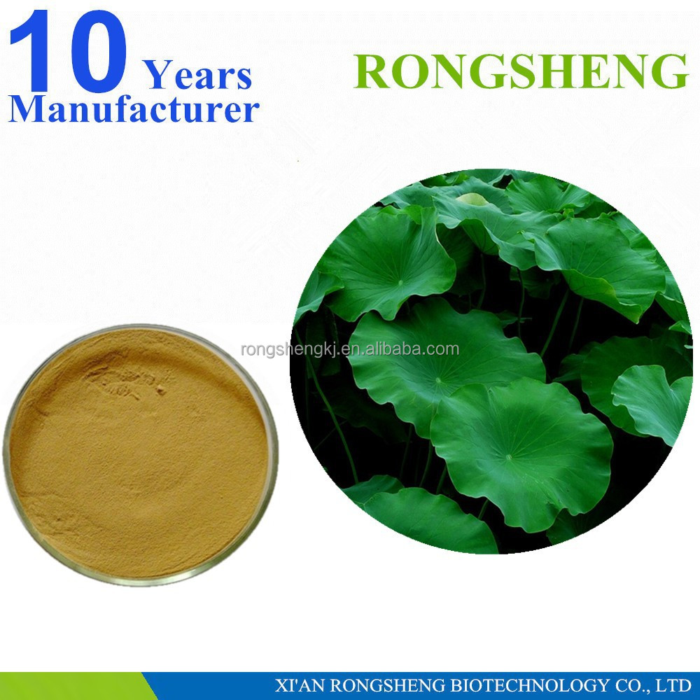 Pure Natural Nuciferine Lotus Leaf Extract
