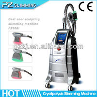 2013 Hot sale cellulite removal fat freezing cryolipolysis weight loss machine ( remodeling charming figure)