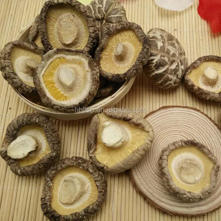 Market Prices for Dried White Flower Mushroom Whole in Spring Cultivated