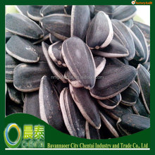 The Biggest Export Factory Chinese Sunflower seeds Suppliers