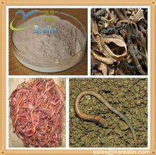 100% Natural High Quality Earthworm Active lumbricus powder 5000u/mg 10000u/mg