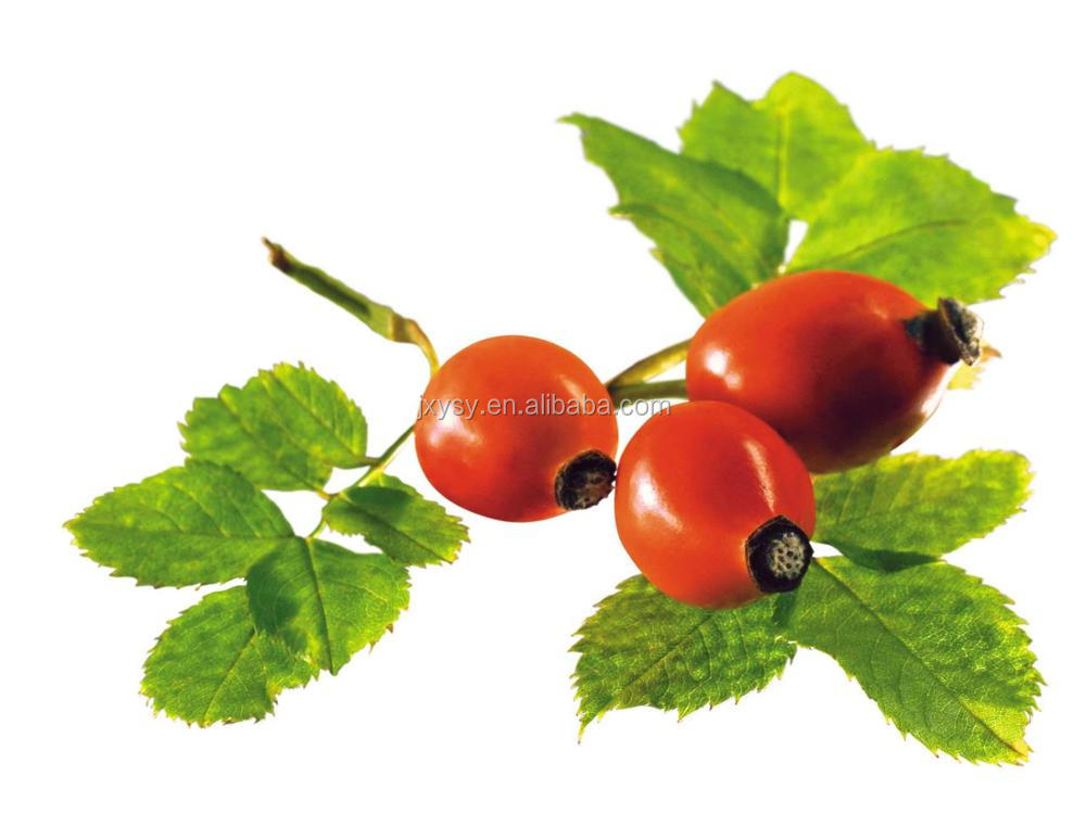 GMP Approved Best Carrier Oil Rosehip Oil/Rose Hip Seed Oil In Bulk For Skin Care