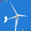 5kw wind turbine generator can connect controller & inverter