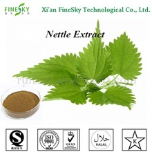 Fresh Supply Natural Nettle Extract, Nettle Root Extract 7% Silicic Acid