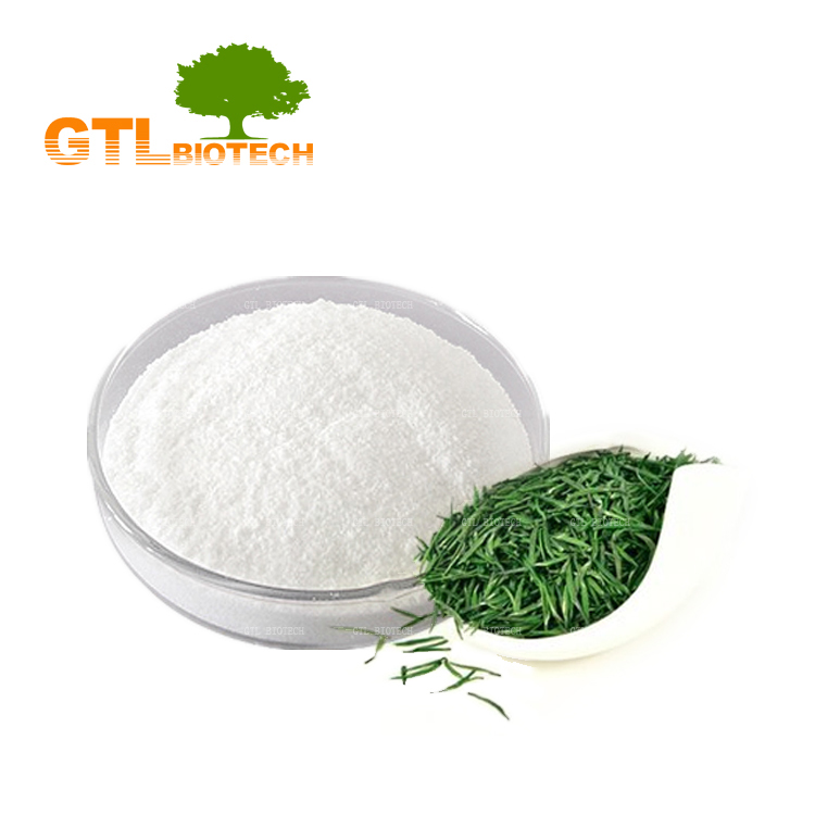 Pure Natural Green Tea Extract Powder EGCG Purity 95% with Bulk Sale