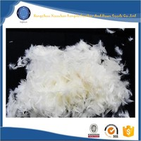 Wholesale cheap washed white goose feather down price