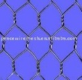Sell Gabion hexagonal wire mesh