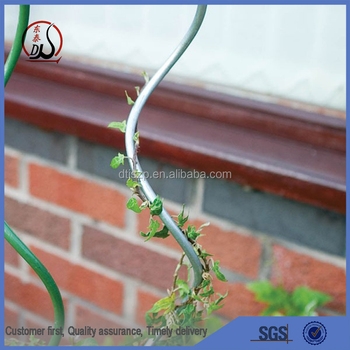 Tomato Growing Spiral / Plant Support Wire