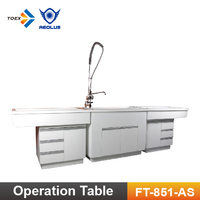 FT-851-AS Luxury Veterinary Dental Preparation Tables Clinic equipment with Artificial Stone Tub