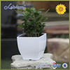 """Alibaba TOP 1 pot supplier"" decoration container homes for sale Home gardening plastic pots"