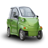 Easy park l6e Smart 2 Seats EEC Electric Car Made in China