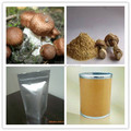 high quality Himematsutake Powder factory direct sale and good price
