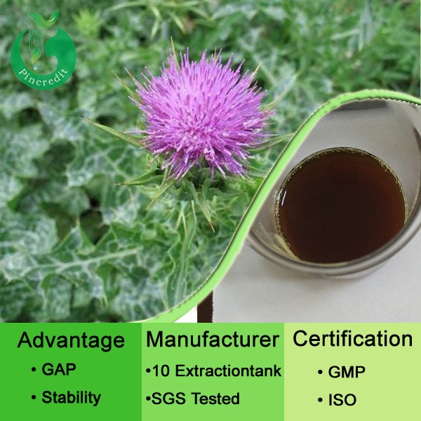 Water soluble thistle extact silymarin milk thistle extract