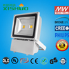 High lumen waterproof outdoor Meanwell driver Led Flood Light with CE IES IP67