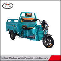 Inexpensive Strong Power 500KG Loading Electric Cargo Tricycle on Sale