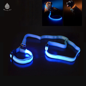 Safety Flashing Nylon Pet LED Dog Collar, Custom High Quality Wholesale dog leash