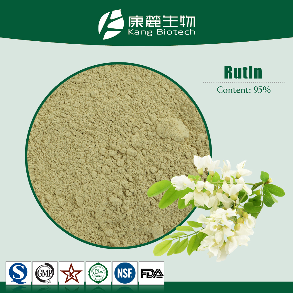 Factory 100% natural organic 98%dihydroquercetin quercetin Rutin powder low price Sophora Japonica Extract powder quercetin