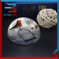 Pujiang factory wholesale vintage bird printing dome glass paperweight,magnify crystal paperweight for sale