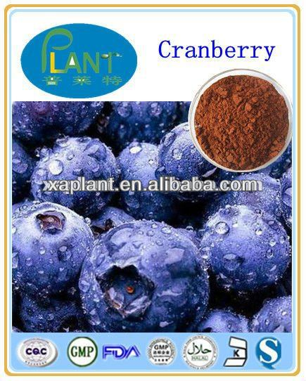 Bilberry Extract powder,25% Anthocyanidin