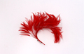Millinery feather mount flower