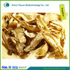 High Quality Chinese Angelica Sinensis