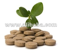 Slimming Tablets with Hoodia Gordonii Powder