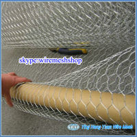 Low Carbon Chicken Wire Mesh