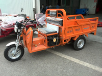 Hot sale electric tricycle/110cc 120cc 150cc tricycle motorcycle/Hot sale bajaj three wheeler price