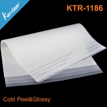 Kenteer 75/100 micron Excellent pet heat transfer film for Screen printing