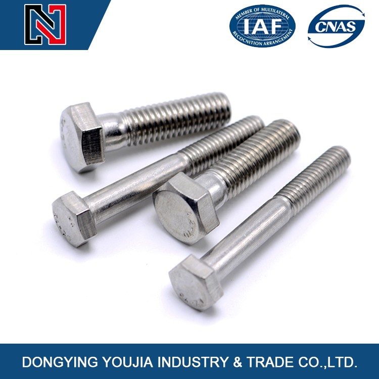 China exported stainless steel heavy hex bolts