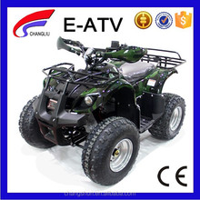 Hot Selling Adult Electric ATV Quadricycle