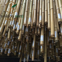 Moso Natural Bamboo Cane Of PE