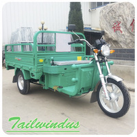 1200w 1000w 800w High power 48V 60V Voltage truck cargo tricycle