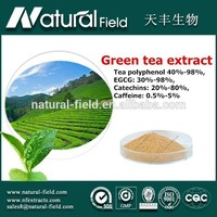 Reasonable supplier Online sales green tea extraction polyphenols powder 50%-98% powder