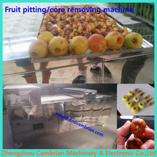 Fruit factory use cherry stone remover with lowest price