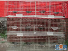 Best Sale Pigeon Breeding Cage/ Racing Pigeon Cage HJ-PC24