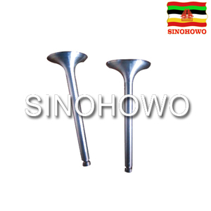 Engine Valve JAC 1040 Chinese Cheap Spare Parts Used In Cargo Truck