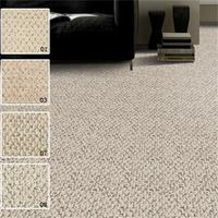 Home Outdoor Wall To Wall Carpet Lowes