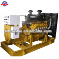 Natural Gas Generator set /fuelDiesel generator / Gas Engine Manufacturer